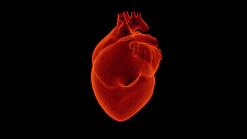 infarto al corazón anisoso enfermarse enfermar descanso