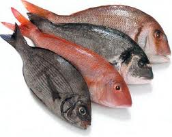 pescado omega3